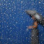 #1 – Anggrek dan rintik air hujan